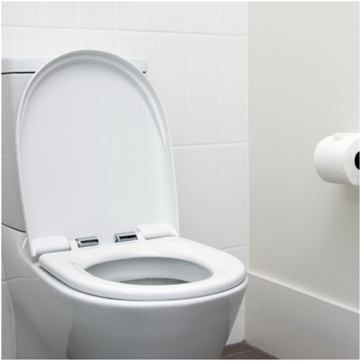 Five Reasons Why Church Toilet Seats Is Above The Rest